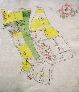 carte terrier 1775 Saint-Loup-de-Varennes